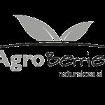 Logo Agroberries